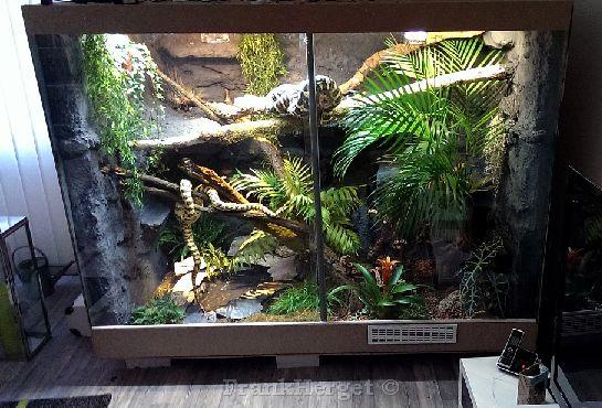 Schlangenterrarien